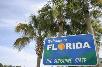 Applications Flood Florida Program for Unemployed Homeowners