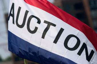 Wayne County Treasurer to Auction Tax Foreclosed Properties Online